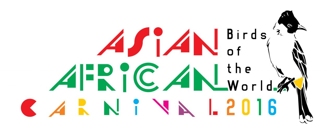 asian african carnival 2016